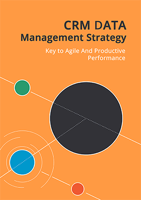 CRM Data Management Strategy. Key to Agile and Productive Performance