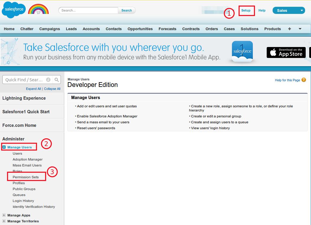 salesforce enable api
