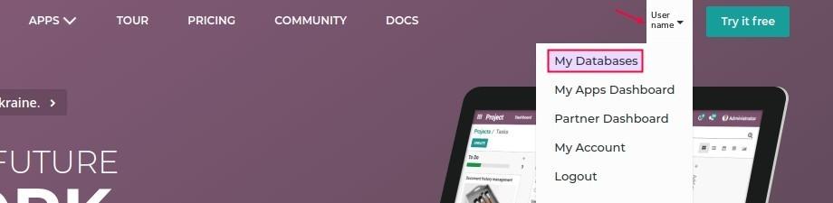 Odoo database